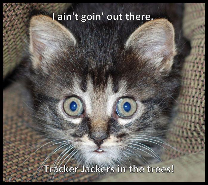 tracker jacker meme