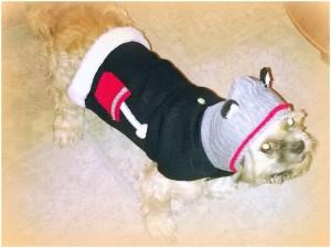 Scruffy sweater