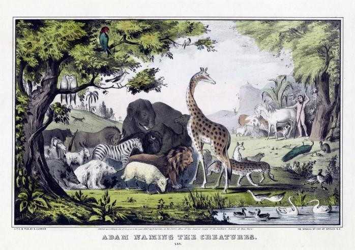 vintage-animal-poster public domain
