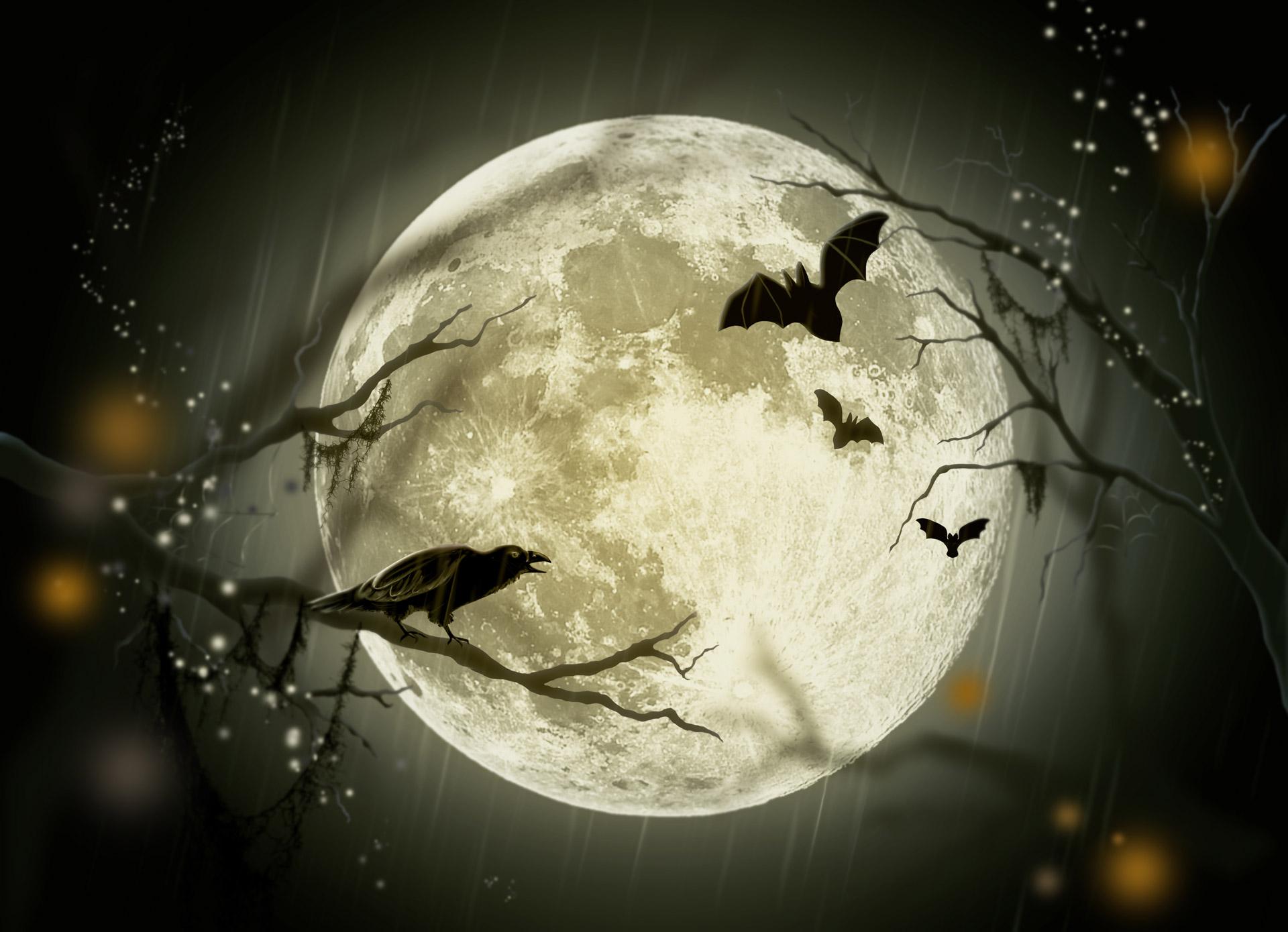 halloween-by Larisa Koshkina publicdomainpicturesdotnet