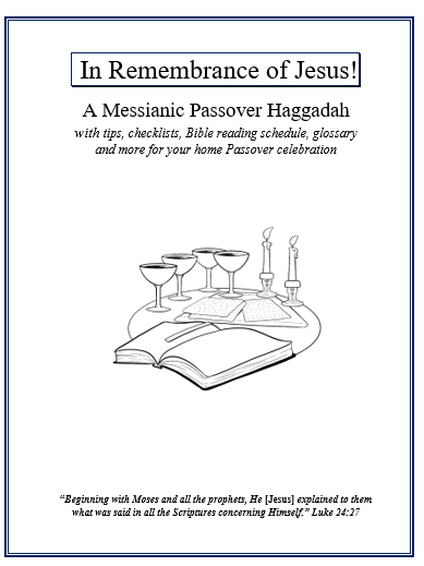 haggadah-front-page-image-1